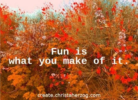 Fun is what you make of it