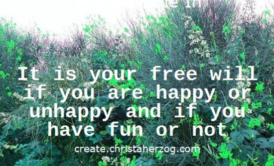 Fun or not is your choice