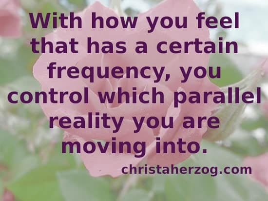 Control into which Parallel Reality you are Moving