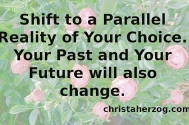 Shift to a Parallel Reality Your Life Will Change